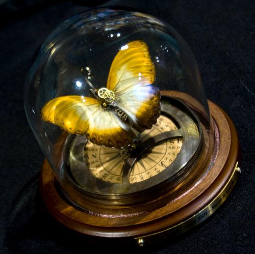 Solstice Award